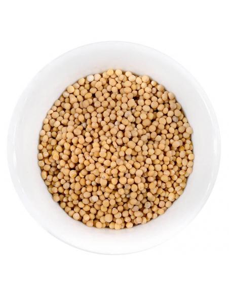 Senfkörner ganz Gewürzanischt - Hartkorn